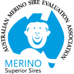 Colour Logo | Merino Superior Sires