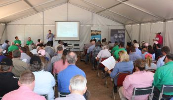 Balmoral Field Day 2018 Presentation | Merino Superior Sires